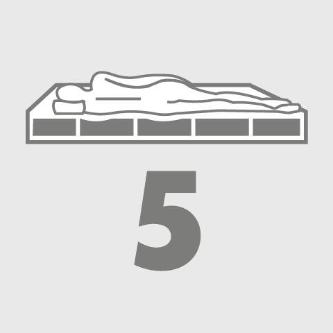 5-zónový